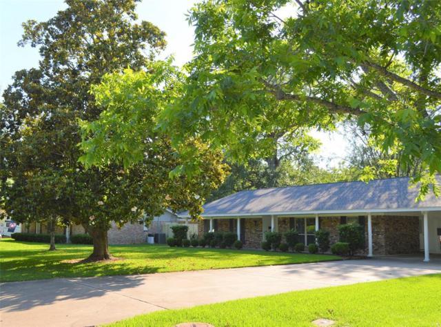 317 Linden Lane, Lake Jackson, TX 77566 (MLS #81700217) :: Texas Home Shop Realty