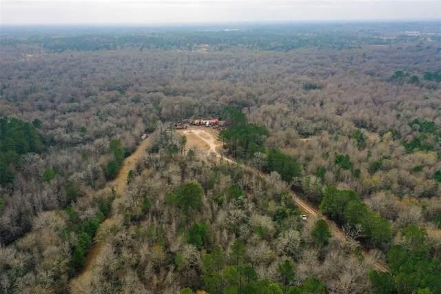10711 Frank Lane, Magnolia, TX 77354 (MLS #81716620) :: My BCS Home Real Estate Group