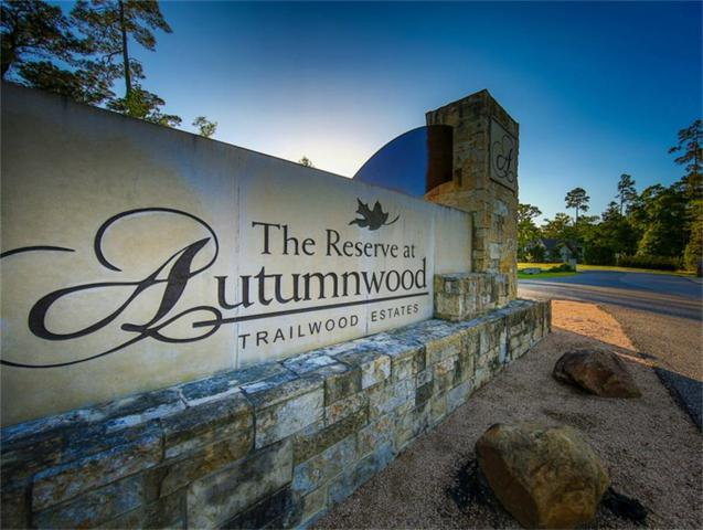 1199 Trailwood Estates, Magnolia, TX 77354 (MLS #81723041) :: The Freund Group