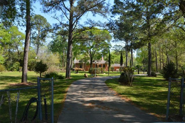 12309 Pine Oak Drive, Dickinson, TX 77539 (MLS #81731137) :: The SOLD by George Team