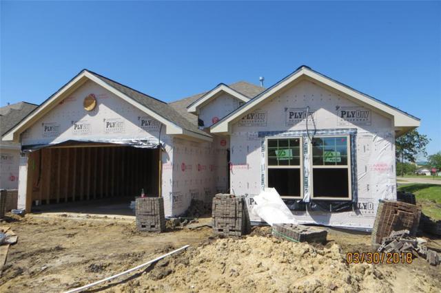 229 N 3rd Street, La Porte, TX 77571 (MLS #81757798) :: Texas Home Shop Realty