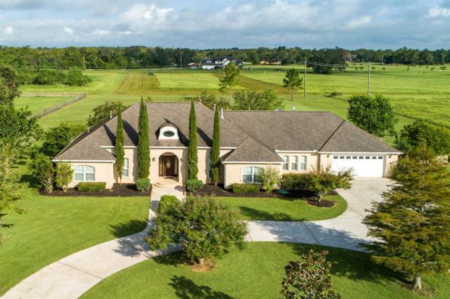 714 Comanche Trail Drive, Rosharon, TX 77583 (MLS #81795468) :: Texas Home Shop Realty