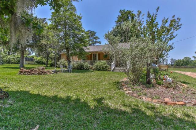 20502 Forestview Drive, Magnolia, TX 77355 (MLS #81833758) :: Krueger Real Estate
