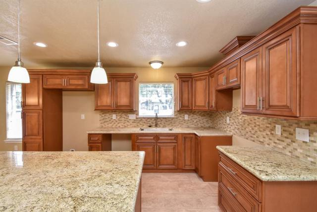 25134 Roesner Lane, Katy, TX 77494 (MLS #81934794) :: The Parodi Team at Realty Associates