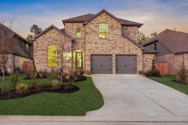 117 Stella Iris Lane, Montgomery, TX 77316 (MLS #81949897) :: Texas Home Shop Realty