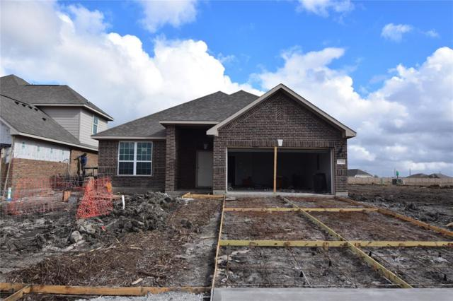 10315 Matterhorn Drive, Iowa Colony, TX 77583 (MLS #81987549) :: Connect Realty