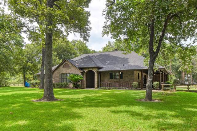 26312 Red Oak Hollow, Magnolia, TX 77355 (MLS #81993262) :: The Parodi Team at Realty Associates