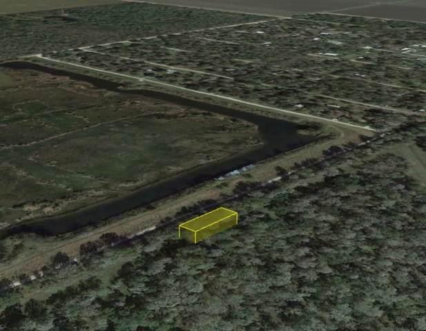 0 Levee Road, Guy, TX 77444 (MLS #82036789) :: Keller Williams Realty