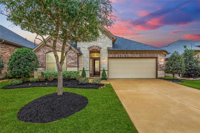 29019 Pinnacle Ridge Drive, Katy, TX 77494 (MLS #82082373) :: The Bly Team
