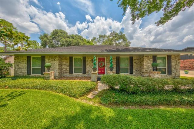 15635 Wandering Trail, Friendswood, TX 77546 (MLS #82089532) :: NewHomePrograms.com LLC