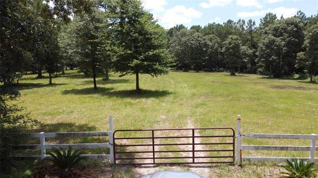 24124 & 24140 Grand Pines Road S, Magnolia, TX 77355 (MLS #82283359) :: The Bly Team