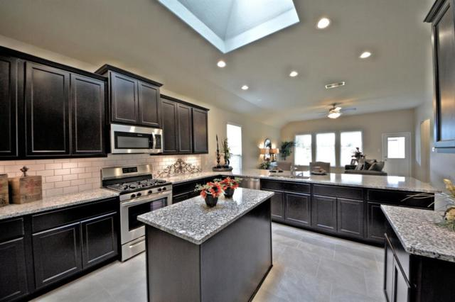 28703 Forest Pass, Katy, TX 77494 (MLS #82350047) :: The SOLD by George Team