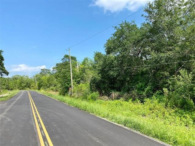 0 Ramble Wood Drive, Brazoria, TX 77422 (MLS #82524722) :: Bray Real Estate Group