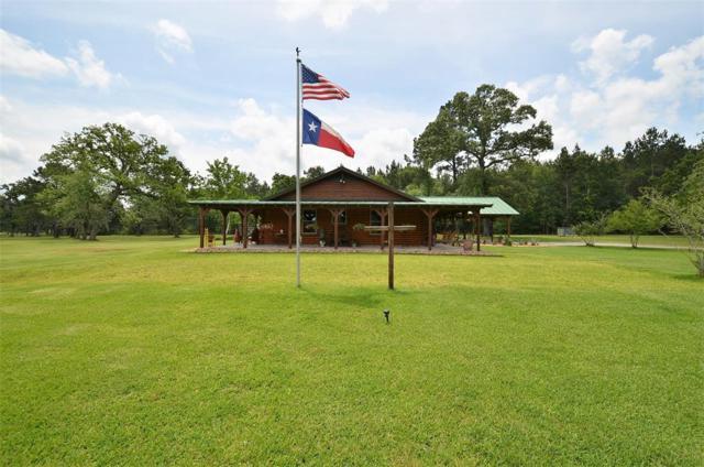 25347 Brushy Creek Drive, Hockley, TX 77447 (MLS #82630623) :: Magnolia Realty