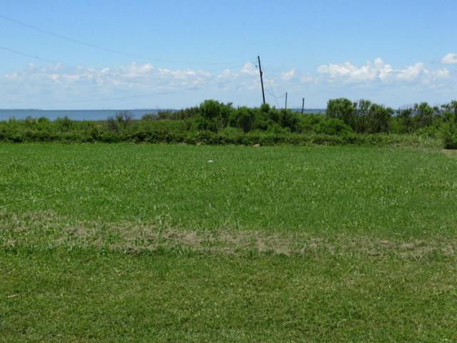22416 Bay Vista, Galveston, TX 77554 (MLS #8266348) :: Giorgi Real Estate Group