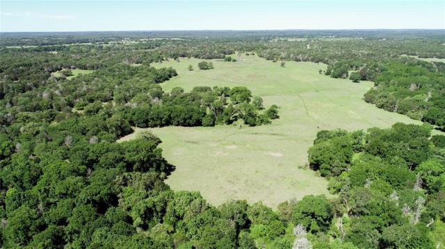 TBD St Delight, Paige, TX 78659 (MLS #82757760) :: The SOLD by George Team