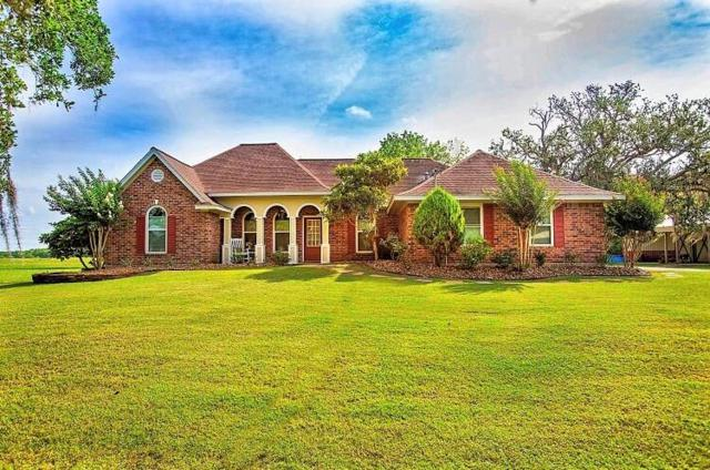 225 Turning Bayou Trail, Angleton, TX 77515 (MLS #82784542) :: The Heyl Group at Keller Williams