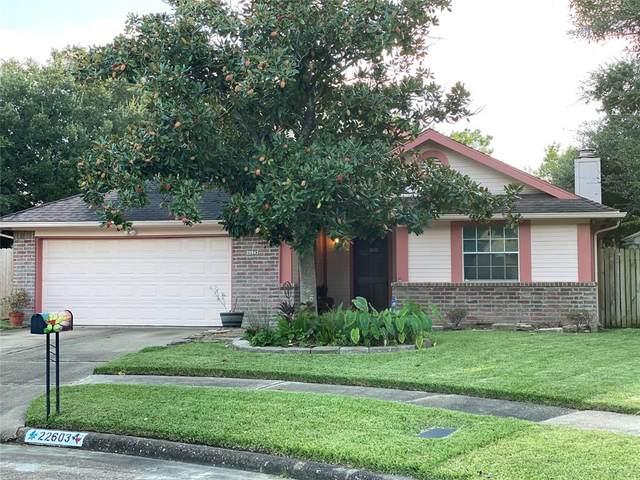 22603 Powell House Lane, Katy, TX 77449 (MLS #82873407) :: The Queen Team