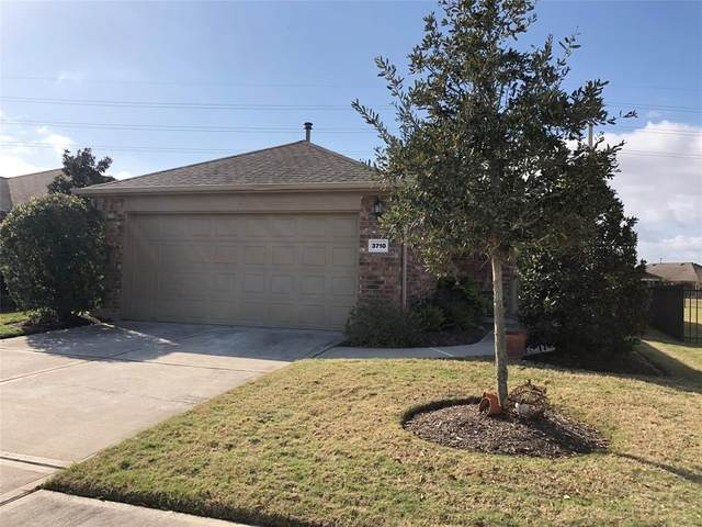 3710 County Seat Lane, Richmond, TX 77469 (MLS #82874673) :: The SOLD by George Team