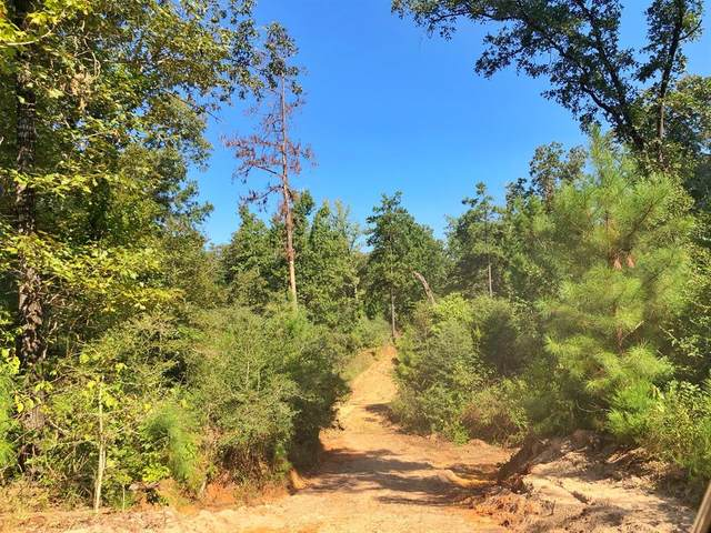30.96 AC Cr 122, Centerville, TX 75833 (MLS #8289904) :: The Bly Team