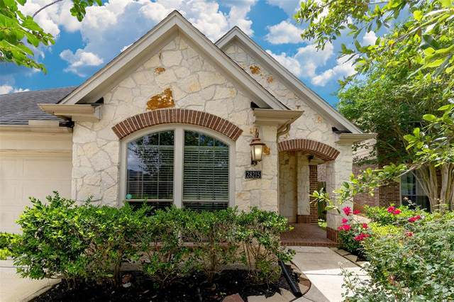 28215 Stonestead Drive, Katy, TX 77494 (MLS #82993695) :: Connect Realty