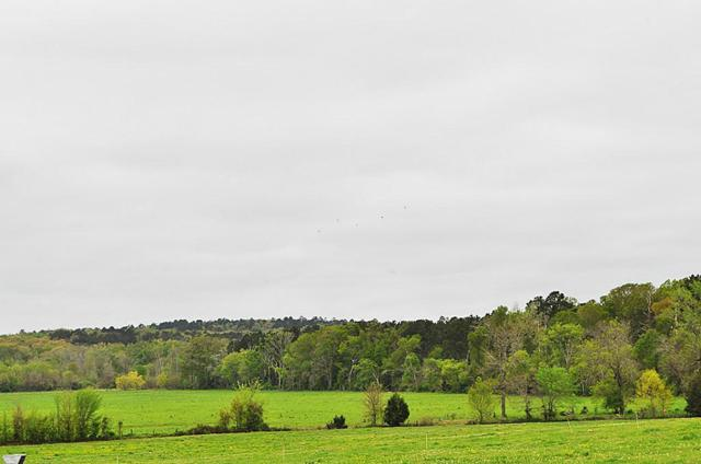 000 County Road 2213, Rusk, TX 75785 (MLS #83115917) :: The Home Branch