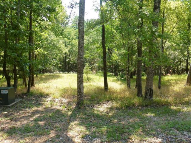 64 S Royale Greens Drive, Coldspring, TX 77331 (MLS #83130177) :: Caskey Realty
