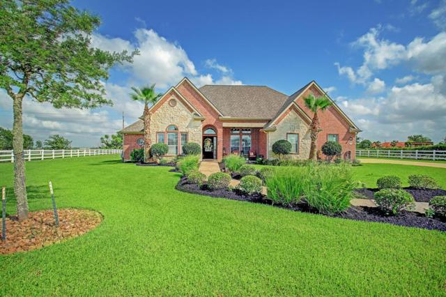 1015 Berry Glen Court, Richmond, TX 77469 (MLS #83176377) :: The SOLD by George Team