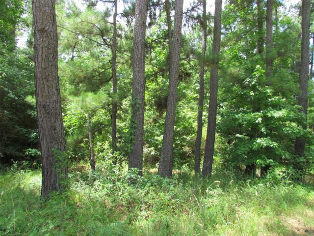 Lot 1 Bobicbeaux Street, Triinity, TX 75862 (MLS #83214110) :: Texas Home Shop Realty