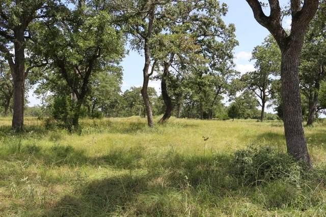 1433 Smith Rau Road, Columbus, TX 78934 (MLS #83263768) :: The Home Branch