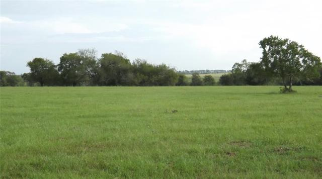 00 Hwy 90, Cat Spring, TX 78933 (MLS #83280496) :: Magnolia Realty