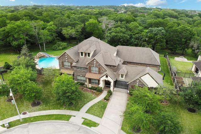 2305 Taylor Sky Lane, Friendswood, TX 77546 (MLS #8334515) :: Christy Buck Team