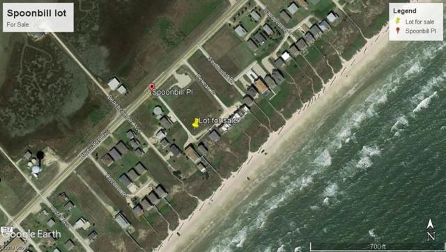 000 Spoonbill Place, Surfside Beach, TX 77541 (MLS #83372581) :: Texas Home Shop Realty