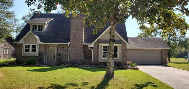 1715 White Feather Trail, Crosby, TX 77532 (MLS #83461492) :: Ellison Real Estate Team