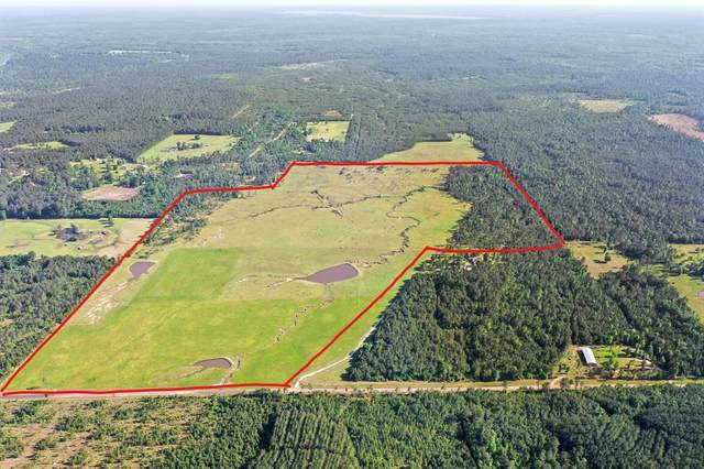 000 County Road 034, Jasper, TX 75951 (MLS #8347090) :: Ellison Real Estate Team