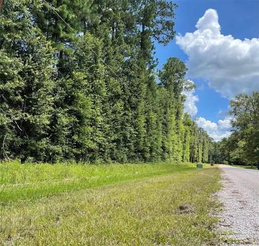 163 CR-6493 White Crest Lane, Dayton, TX 77535 (MLS #83472503) :: My BCS Home Real Estate Group