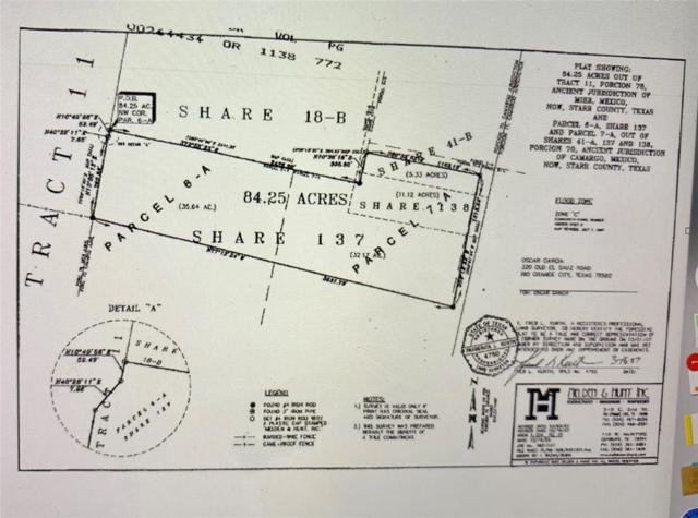 660 N Fm 649 Rgc Tx 78582, Roma, TX 78584 (MLS #83485802) :: Giorgi Real Estate Group