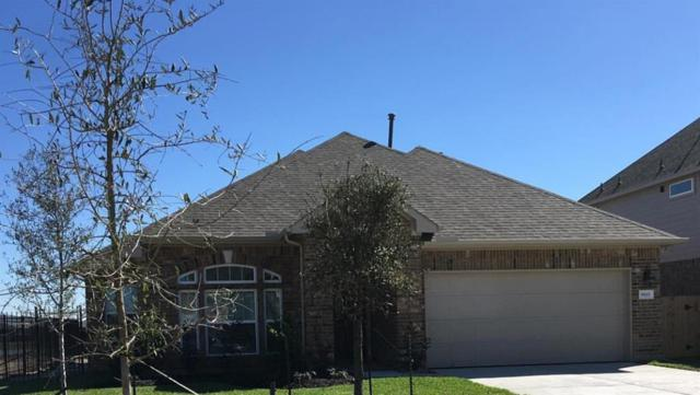 9819 Shimmering Lakes Drive, Rosharon, TX 77583 (MLS #83517925) :: Texas Home Shop Realty