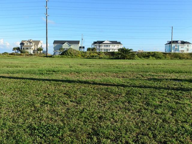 4223 S South Sunset Bay Drive, Galveston, TX 77554 (MLS #83563371) :: TEXdot Realtors, Inc.