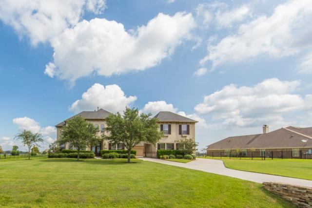 1916 Lake Landing Drive, League City, TX 77573 (MLS #83625434) :: REMAX Space Center - The Bly Team
