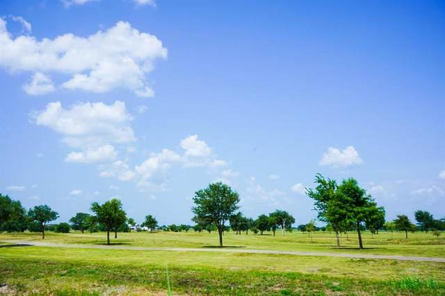 Lot 48 Back Nine Lane, Navasota, TX 77868 (MLS #83672167) :: Texas Home Shop Realty