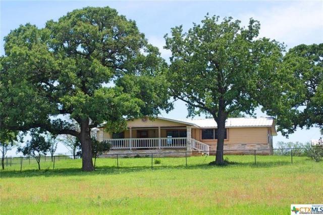 7310 Fm 466, Seguin, TX 78155 (MLS #83782616) :: Texas Home Shop Realty