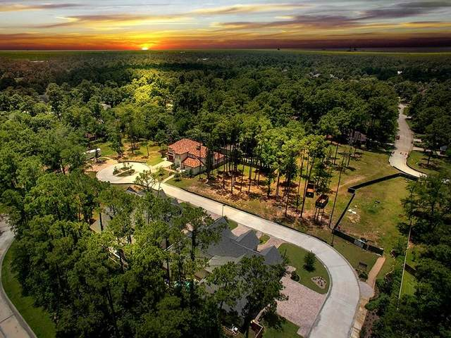 20 Honey Daffodil Place, The Woodlands, TX 77380 (MLS #8379020) :: Green Residential