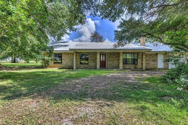 405 County Road 2272, Cleveland, TX 77327 (MLS #83934664) :: The SOLD by George Team