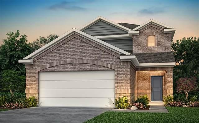 20040 Tuft Canyon Court, Porter, TX 77365 (MLS #84062338) :: Area Pro Group Real Estate, LLC