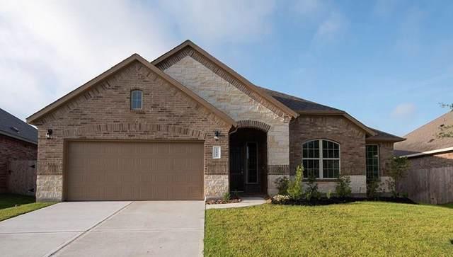 14145 Emory Peak Court, Conroe, TX 77384 (MLS #84067647) :: Giorgi Real Estate Group