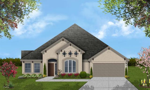 27310 Cheshire Edge Lane, Katy, TX 77494 (MLS #84089645) :: The Home Branch