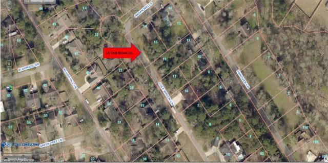 15 Cole Brook Lane, Panorama Village, TX 77304 (MLS #84112308) :: Texas Home Shop Realty