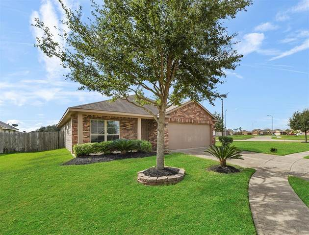20711 Raven Mist Court, Katy, TX 77449 (MLS #84148128) :: Connect Realty