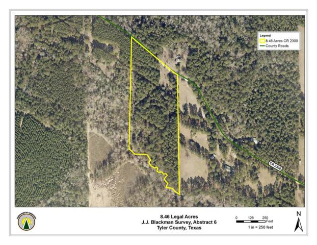TBD County Road 2300, Woodville, TX 75979 (MLS #84154091) :: The SOLD by George Team